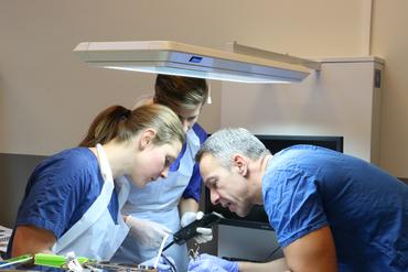 Oral Kirurgi - Rekonstruktion/Plastik