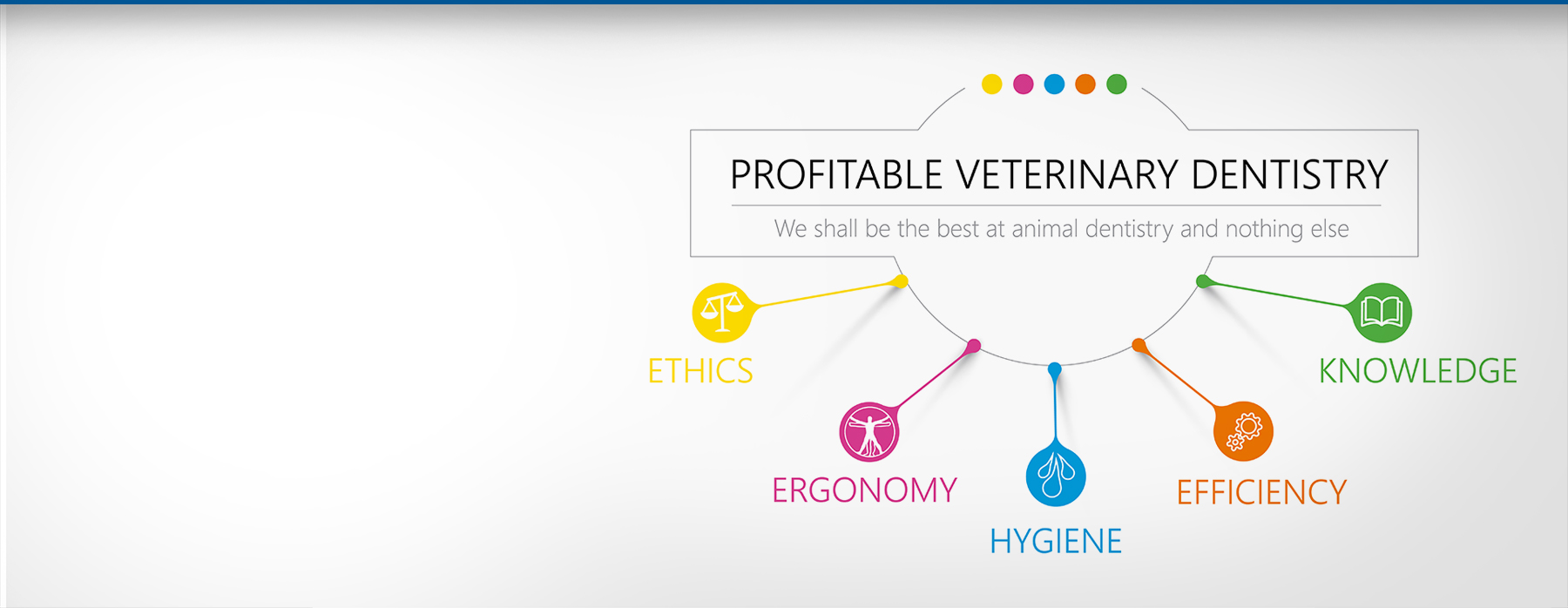 Profitable Veterinary Dentistry <br />- Our Philosophy